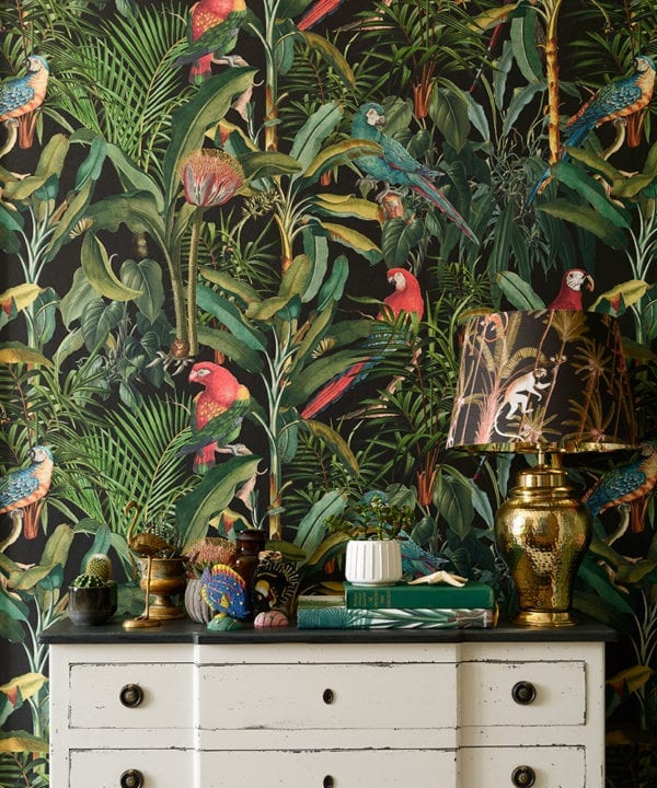 parrots of brasil anthracite wallpaper