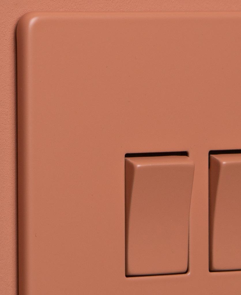 cinnamon 2g double rocker switch