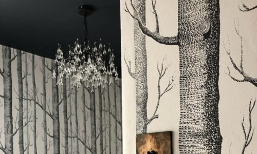 bedroom with white and black tree-print wallpaper with a smoked gold and black single toggle switch on the wall