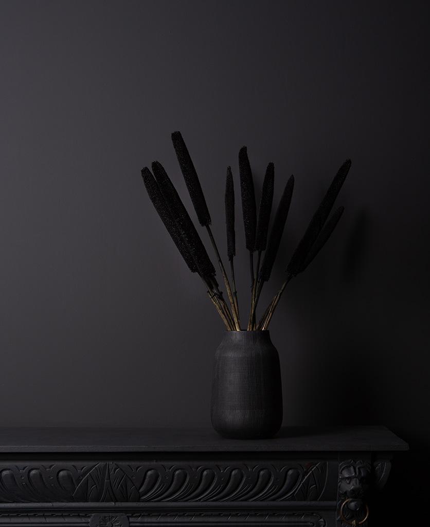 black babala dried stems in black vase on black background