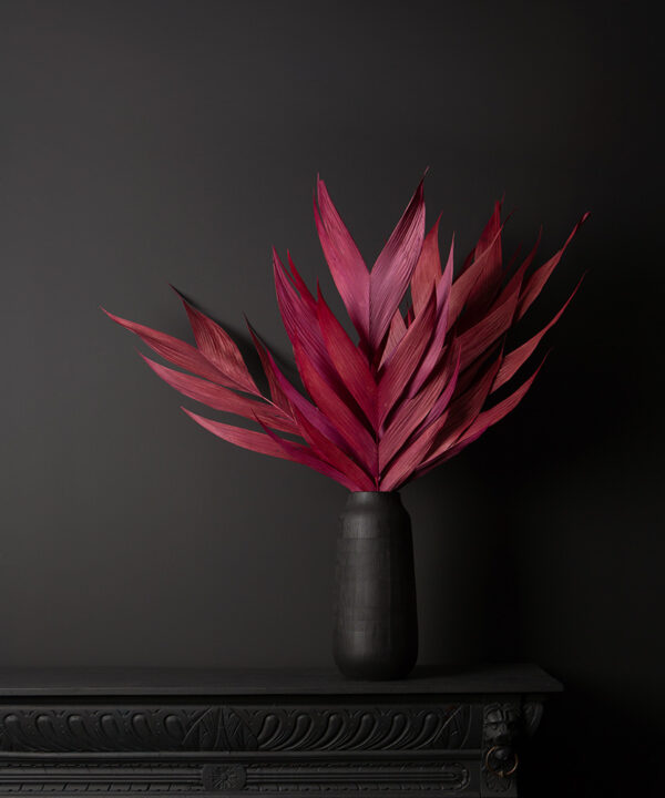 dried red leaf aricana stems in black vase on black background
