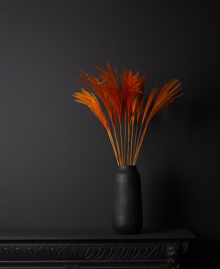 orange stipa feathers in black vase on black background